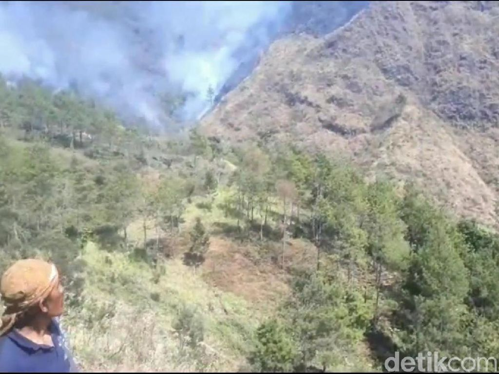 Kebakaran di Gunung Pasuruan Diduga Disengaja, Polisi Diminta Bertindak