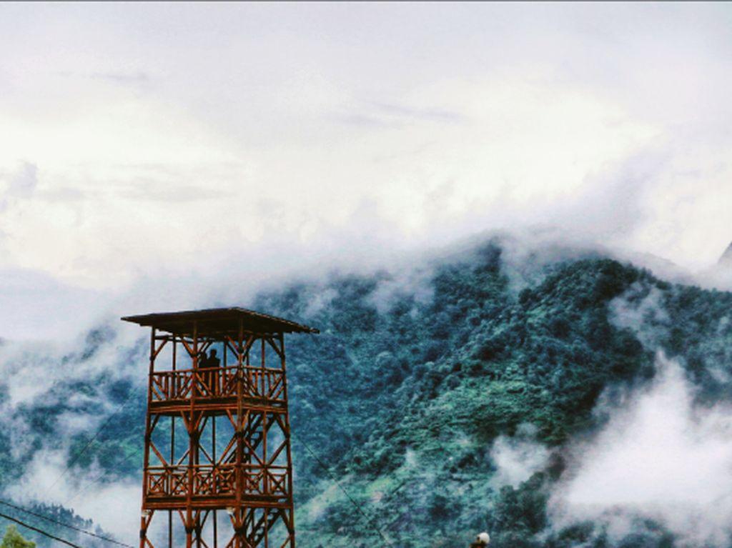 Reboisasi gunung penanggungan