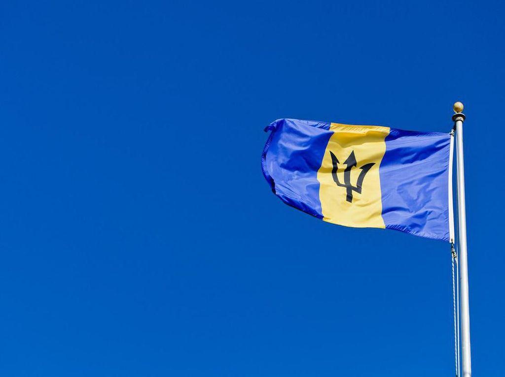 Foto: Bendera-bendera Negara yang Punya Gambar Senjata
