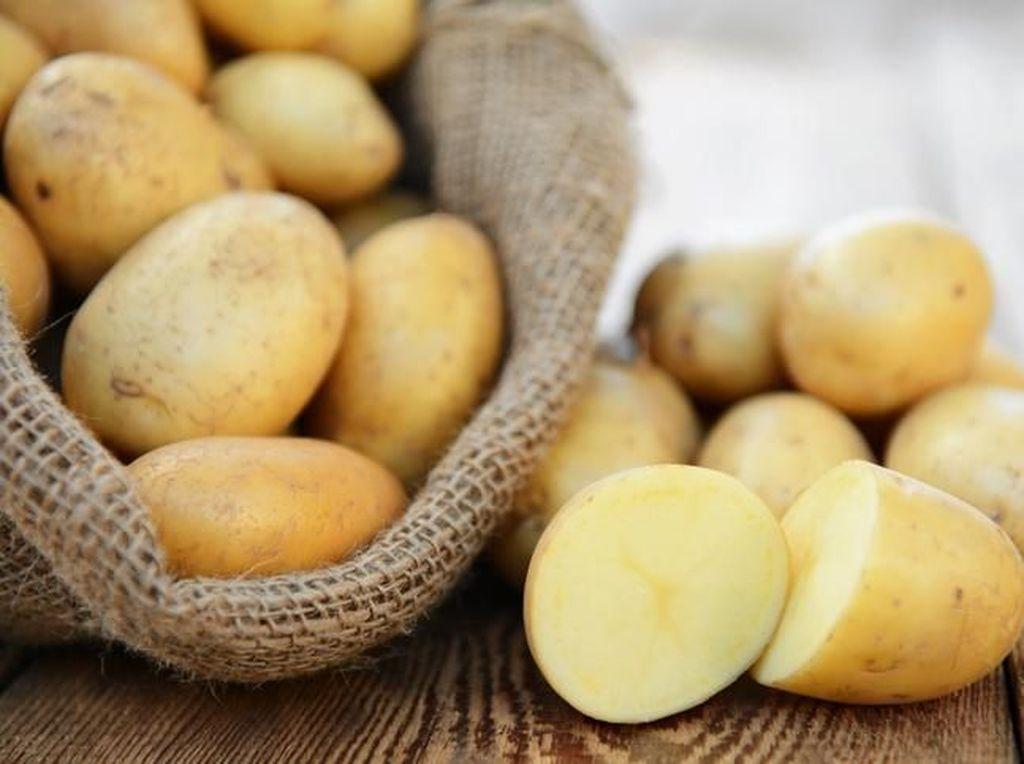 Selain Karbohidrat, Ini Kandungan Nutrisi Kentang yang Menyehatkan