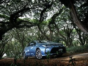 Marak Mobil Listrik dengan Harga Murah Pola Konsumen Bakal Berubah