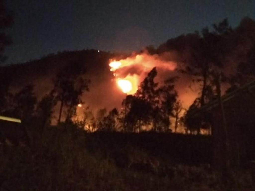 Diduga Ada 4 Pendaki Terjebak di Kebakaran Hutan Gunung Ranti