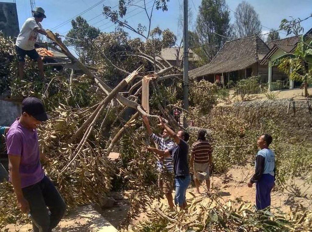 Melihat Dampak Kerusakan Akibat Angin Kencang di Lereng Merapi