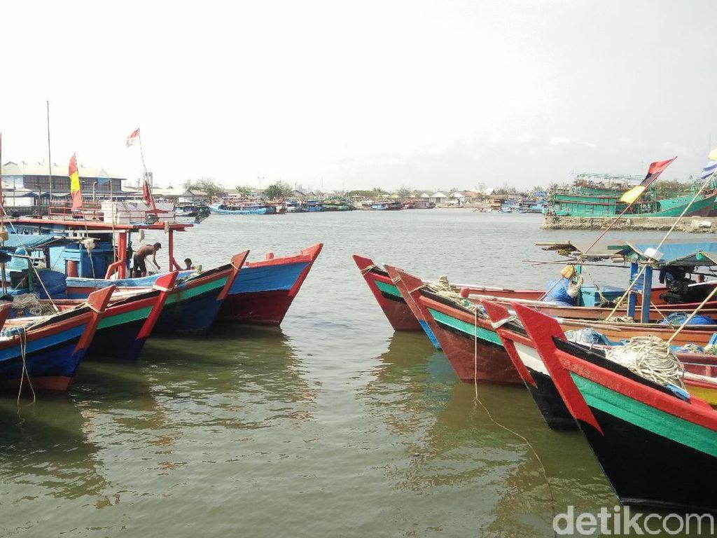 Pakar Sebut Masa Depan Pangan Indonesia Ada di Lautan, Ini Sebabnya