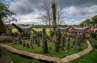 Keajaiban Toraja Utara: Negeri di Atas Awan & Menhir Ratusan Tahun