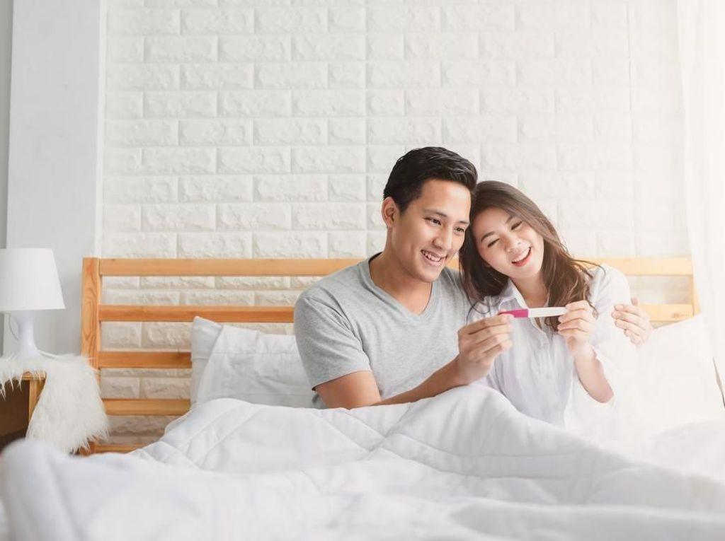 Temukan Langkah Praktis untuk Program Kehamilan