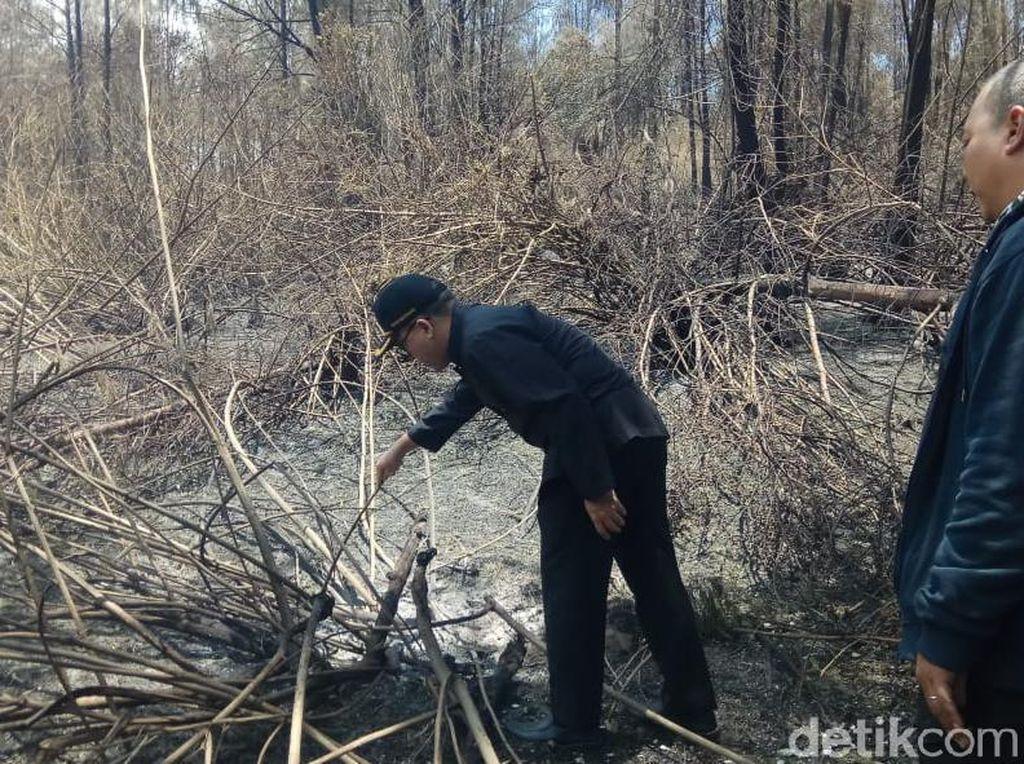 Bupati Anas Minta Water Bombing untuk Padamkan Kebakaran Gunung Ijen