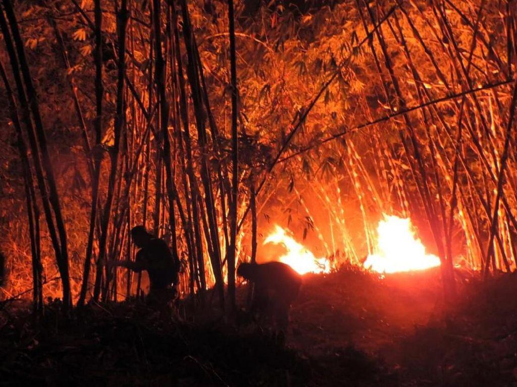 Kebakaran di Gunung Cengkik dan Sirnalanggeng Karawang Capai 50 Ha