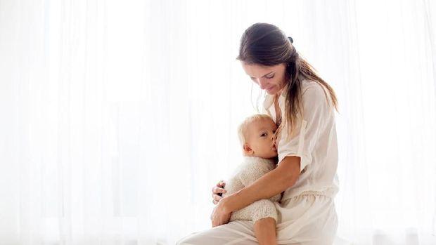 ilustrasi menyusui saat hamil