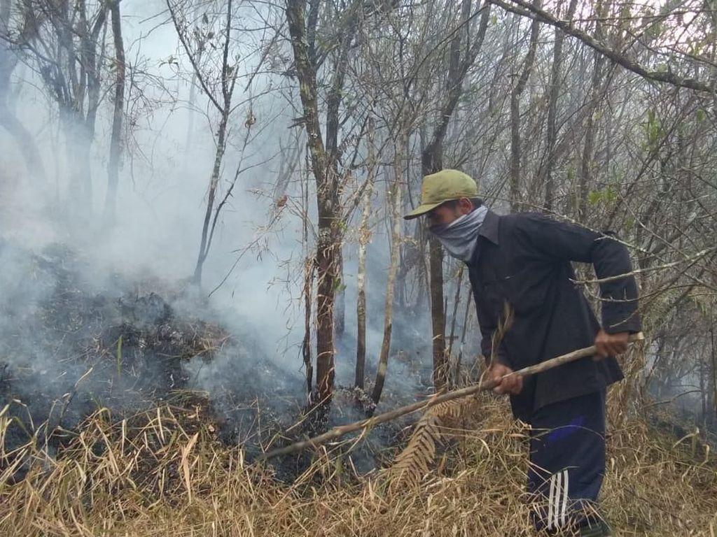 Hutan di Lereng Gunung Sumbing Kembali Terbakar