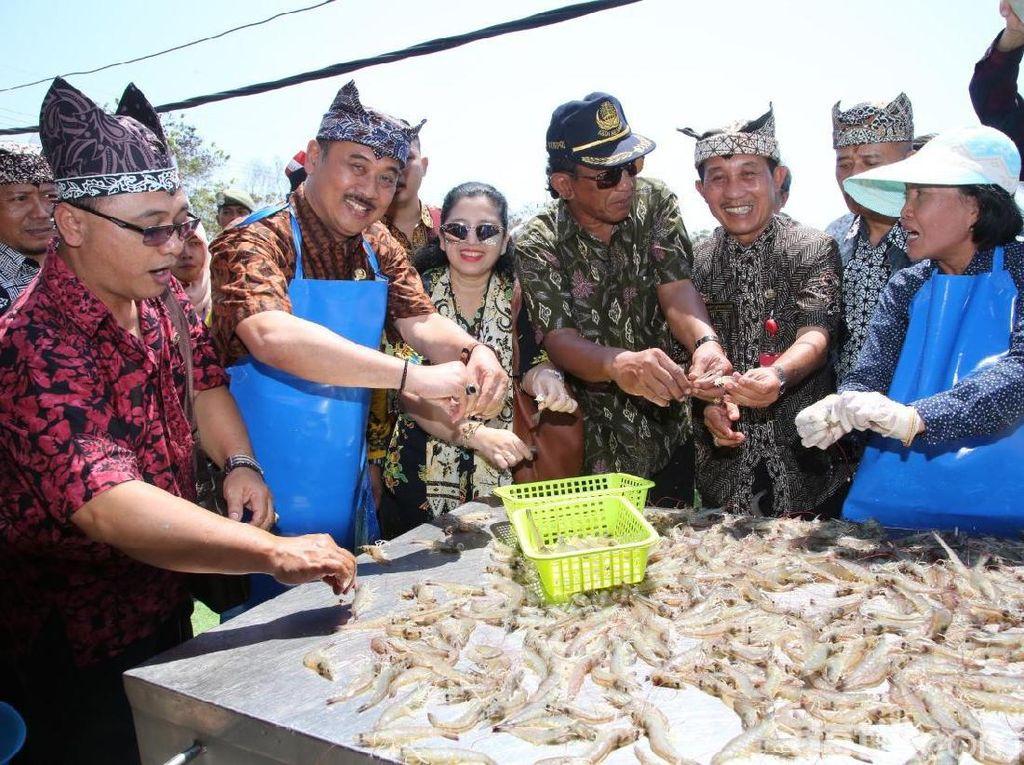 Banyuwangi Gelar Festival Udang di Atas Batu Pantai Ria Bomo