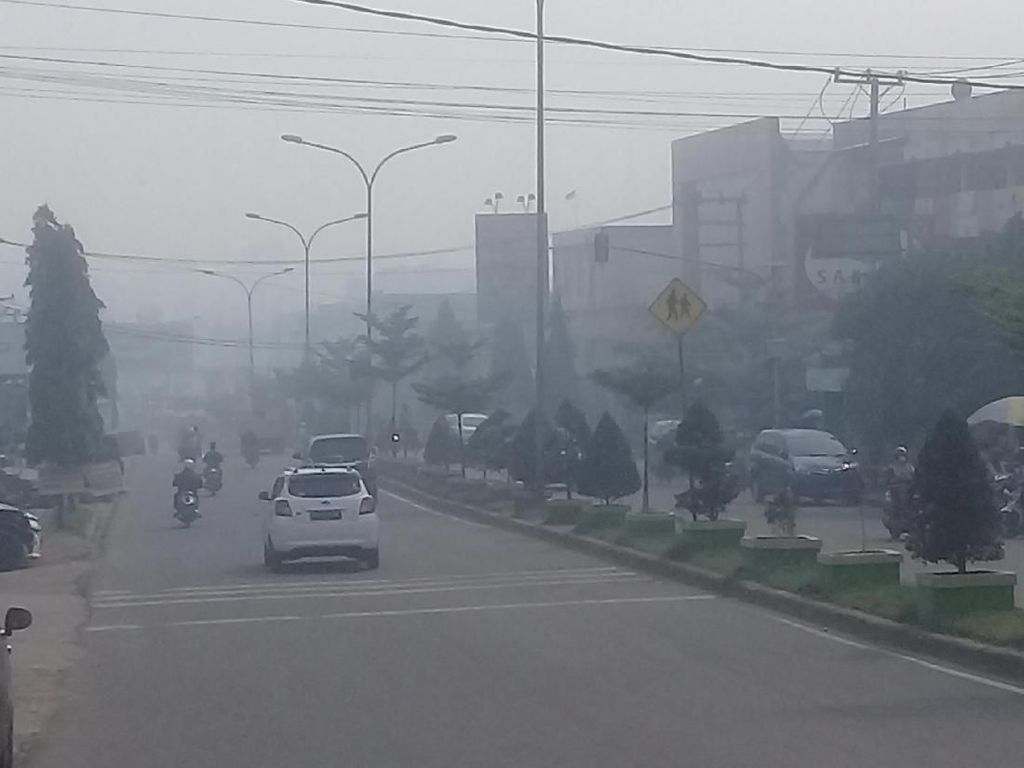 Diselimuti Kabut Asap Pekat, Udara Jambi Pagi Ini Berbahaya