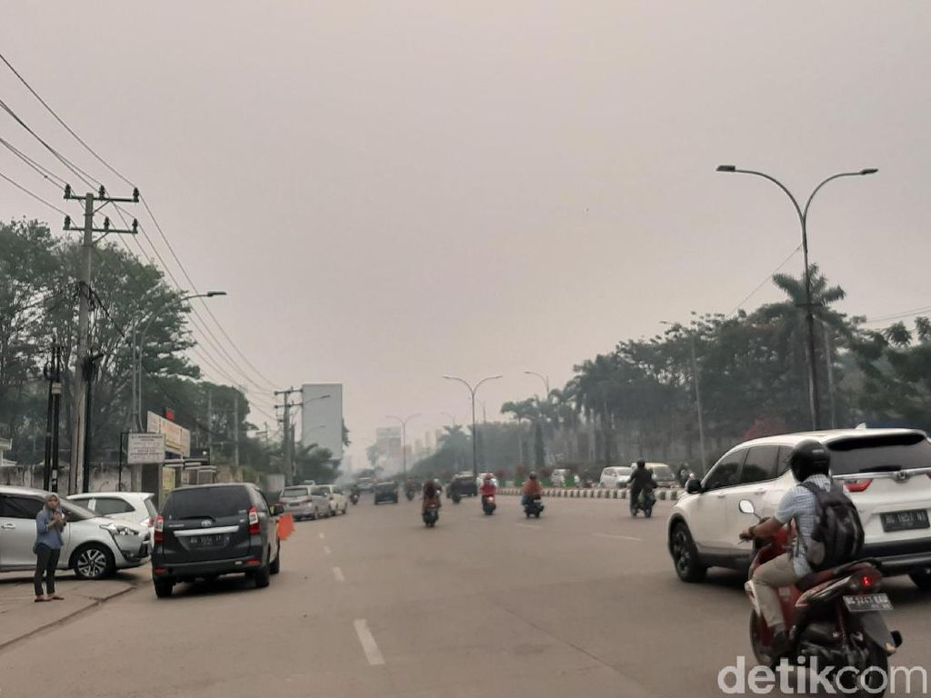 Palembang 2 Pekan Dikepung Kabut Asap, Menteri LHK Diminta Turun Tangan