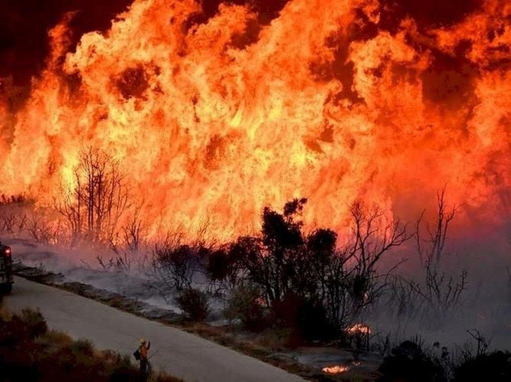 Kebakaran Hutan di California Kian Tak Terkendali, 50 Ribu Orang Dievakuasi