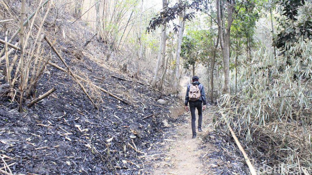 Hutan Keramat di Cimahi, Boleh Masuk tapi Harus Lepas Alas Kaki