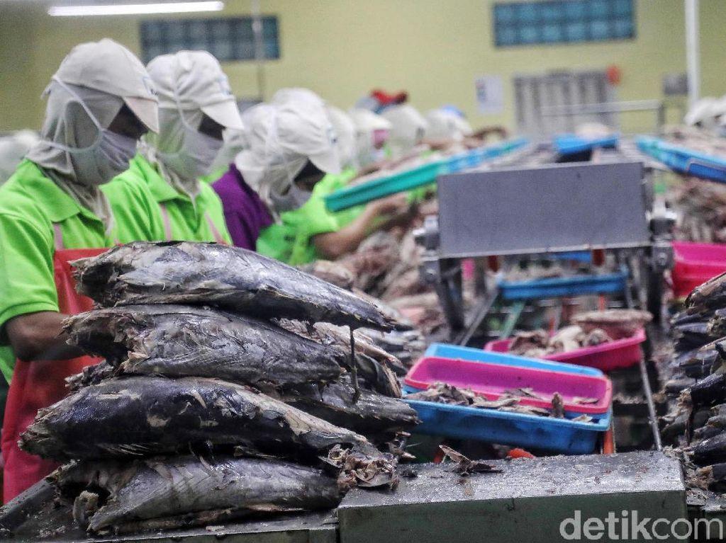 Kenaikan Biaya Logistik Perikanan Diusulkan Ditunda