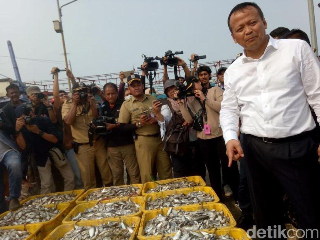 Edhy Prabowo Sudah Tentukan Nasib Ekspor Benih Lobster