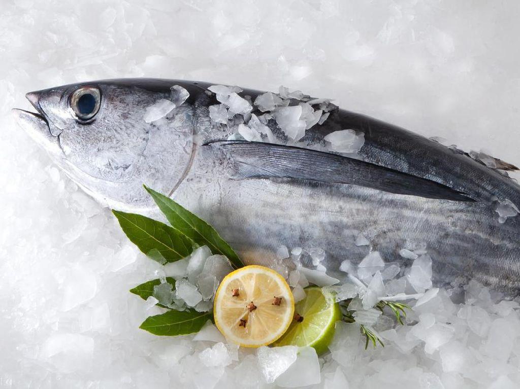 Temukan Jejak Corona, China Tangguhkan Impor Ikan dari Perusahaan Indonesia