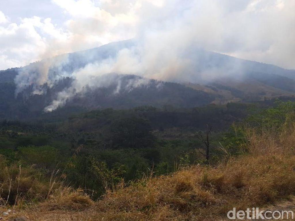 Kebakaran di Gunung Ciremai Kuningan Dipastikan Padam