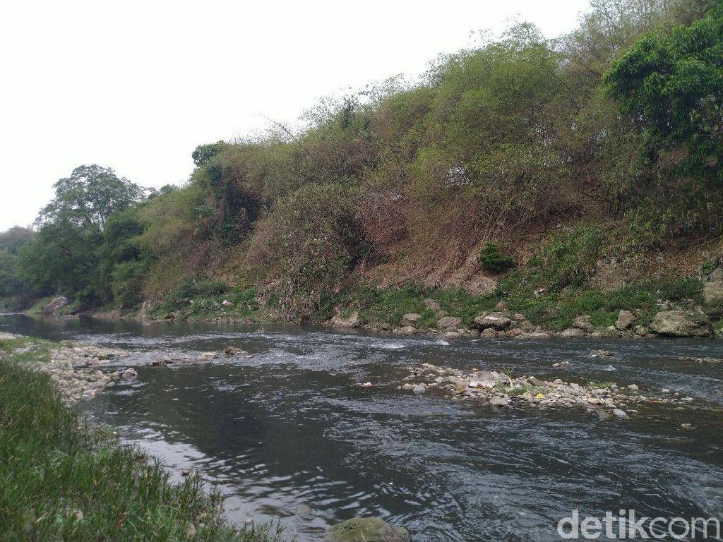 Warga Keluhkan Sungai Cileungsi Tercemar: Baunya Menyengat Masuk Rumah!