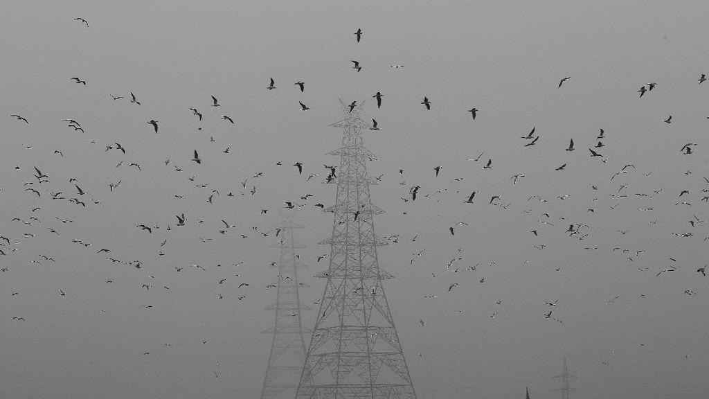 India Hadapi Polusi Udara Terparah
