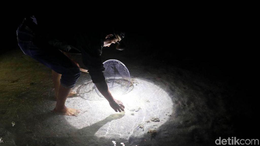 Melihat Aktivitas Warga Natuna Berburu Ikan di Malam Hari