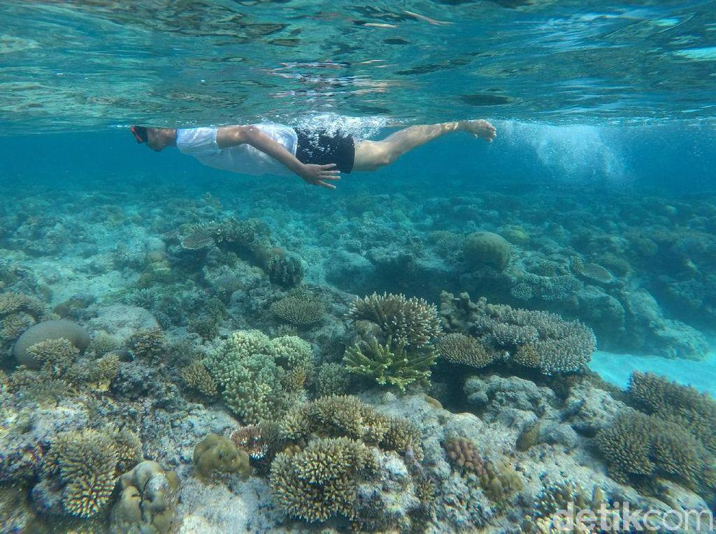 Foto: 8 Destinasi Wisata Bebas Corona di Indonesia