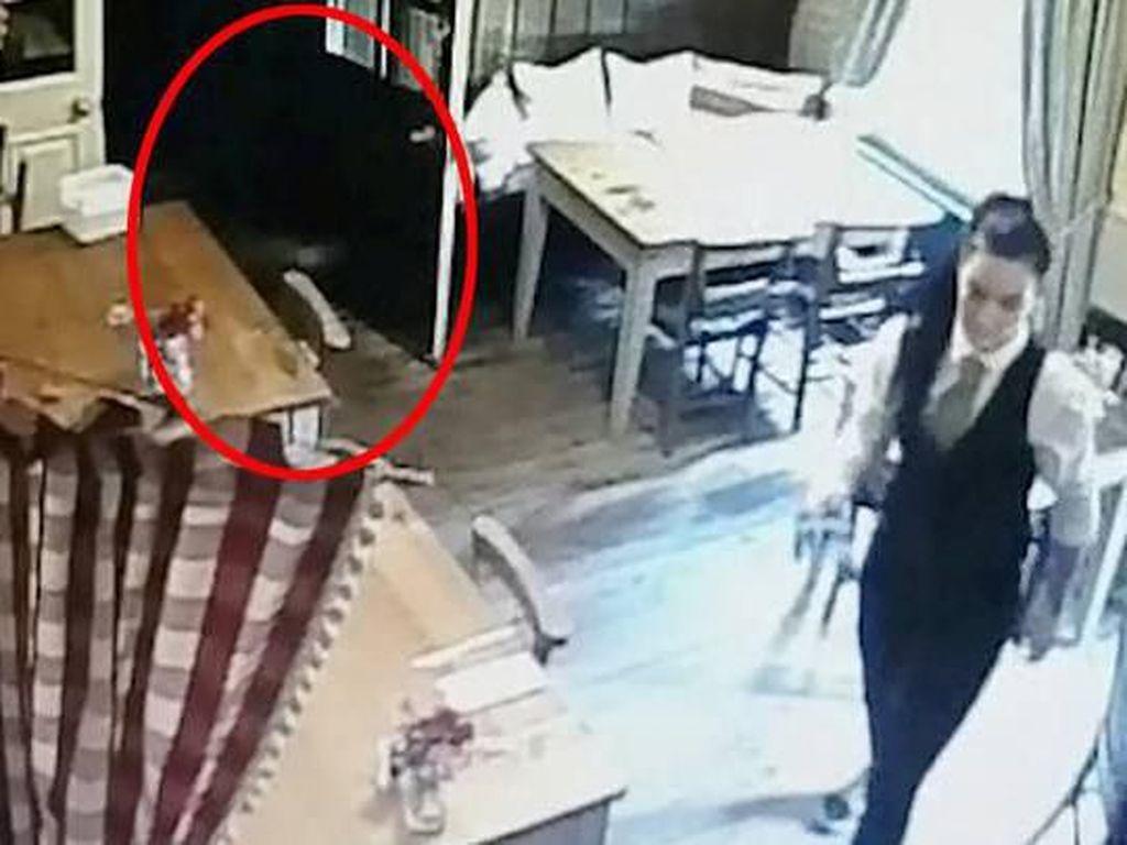 Seram! Pelayan Restoran Ini Bersihkan Meja Ditemani Hantu