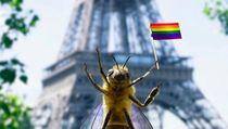 Ketika Lebah Jadi Influencer Wisata