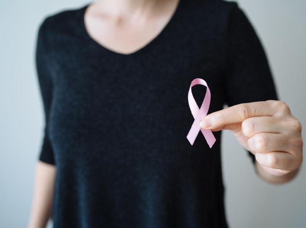 7 Makanan Pencegah Kanker Payudara Sekaligus untuk Daya Tahan Tubuh