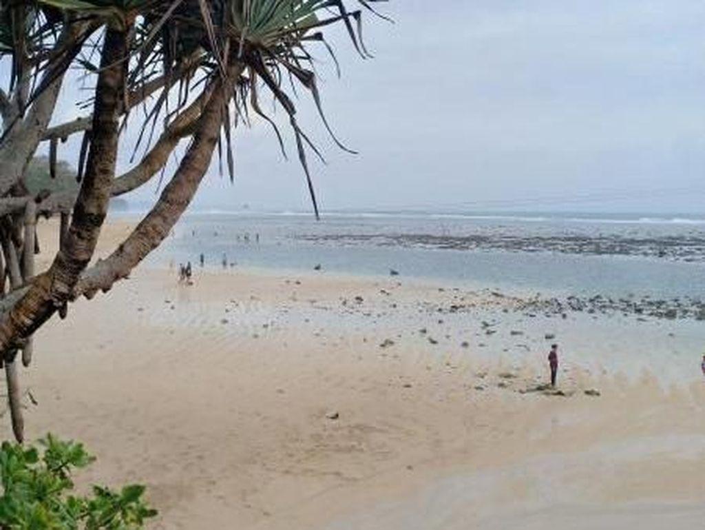 Eksotisme Pantai di Selatan Malang