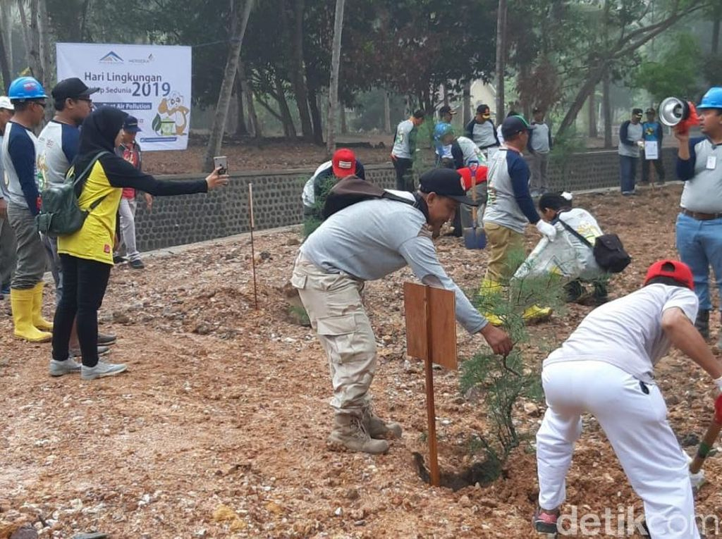 Peringati Hari Lingkungan Hidup, Pemkab Banyuwangi Bersih-bersih Pantai