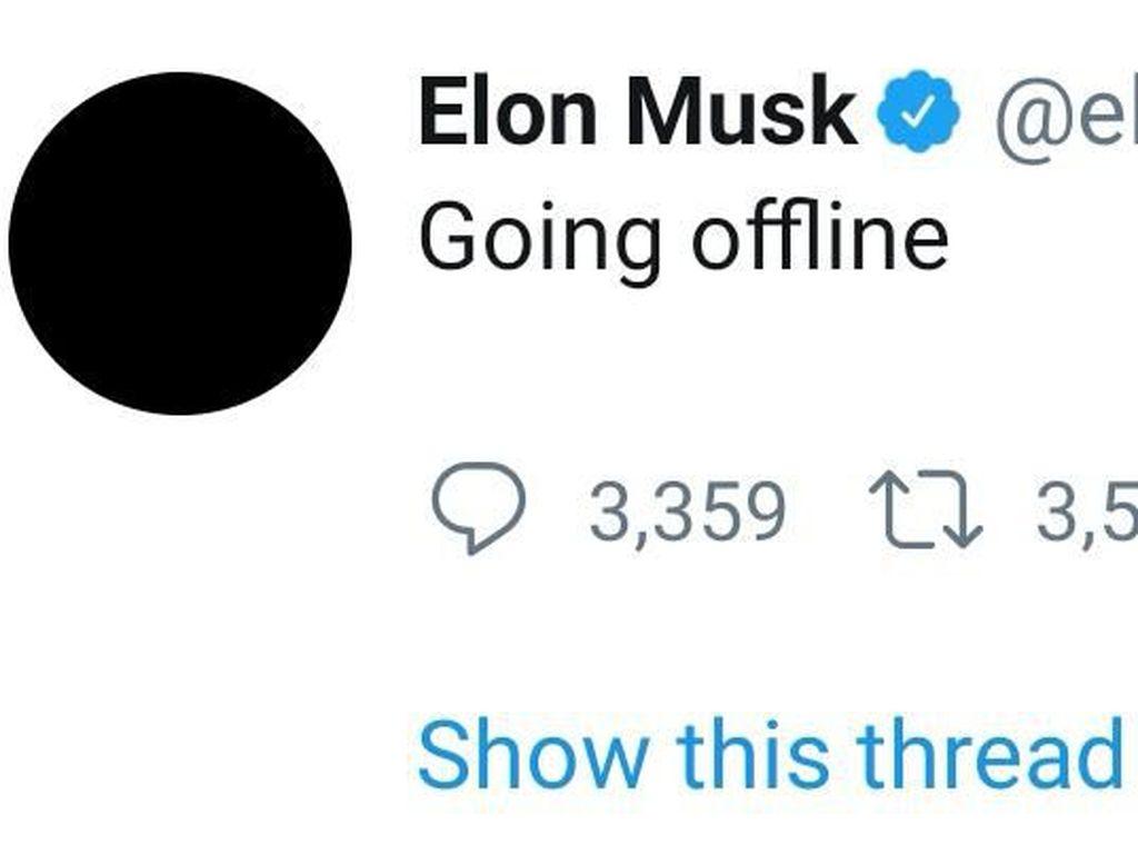 Elon Musk Mendadak Istirahat Main Twitter, Kenapa?