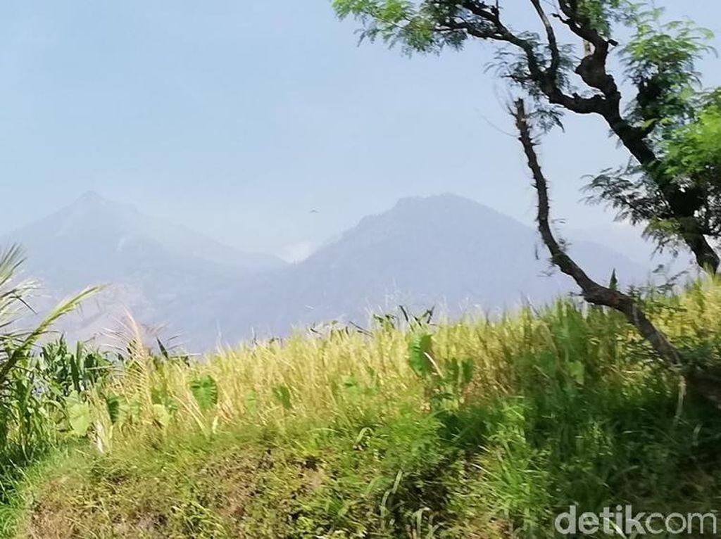 Wow, Daftar Mendaki Gunung Arjuno-Welirang Kini Bisa Secara Online