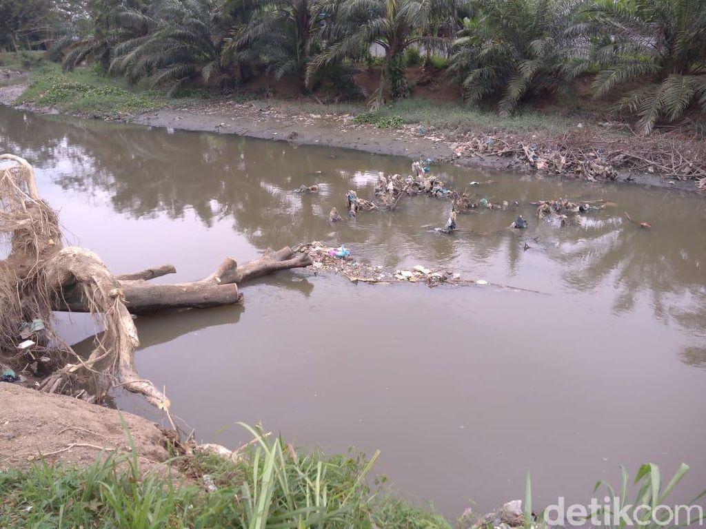 Warga Mengeluh Bau Menyengat dari Sungai Bedera Medan, Ada Bangkai Babi