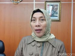 Normalisasi Ciliwung Mandek, PDIP: Anies Kurang Serius Bangun DKI