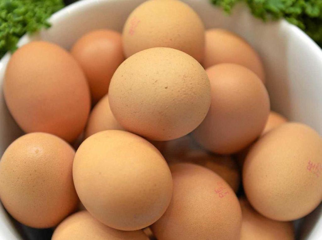 Pemkot Jamin Telur yang Beredar di Surabaya Aman dan Layak Konsumsi