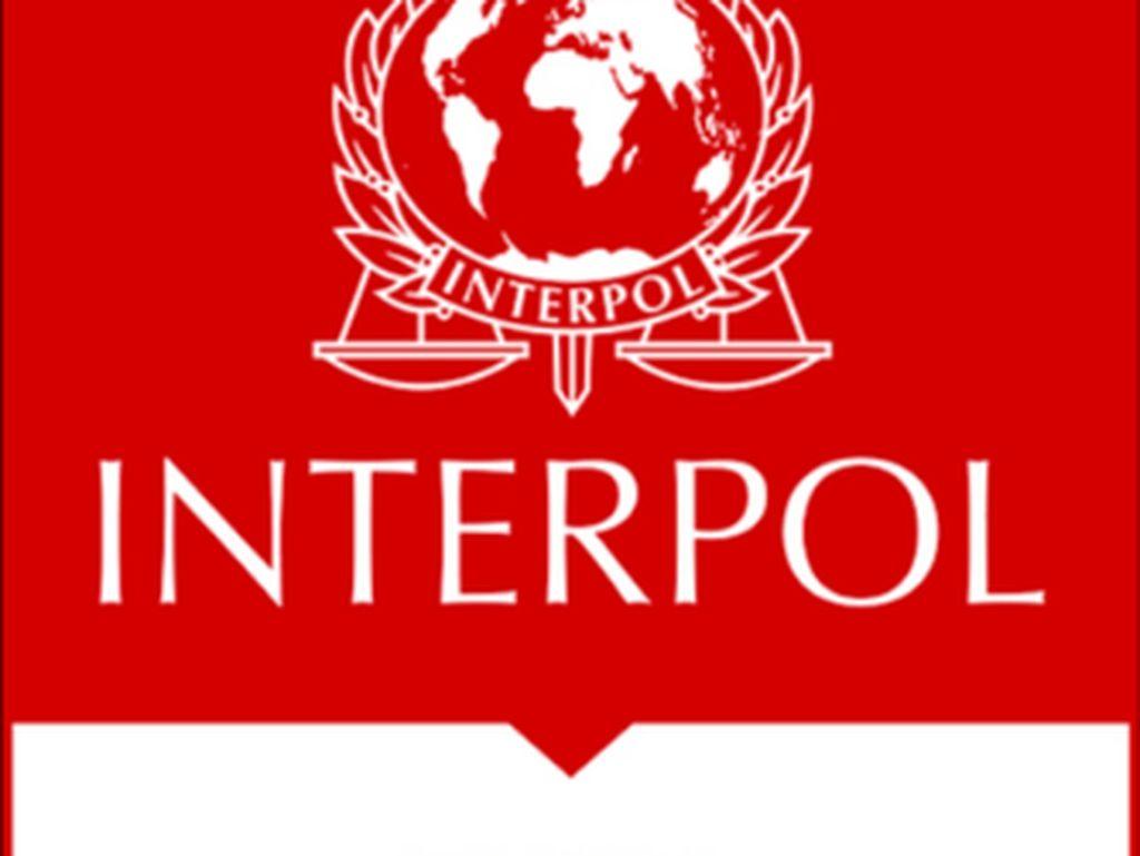 Salah Paham Red Notice Interpol