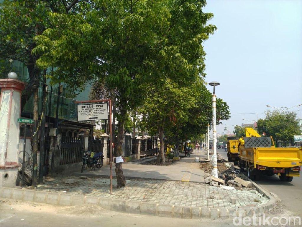 Pohon di Jakarta: Dilabeli Sebelum Dieksekusi