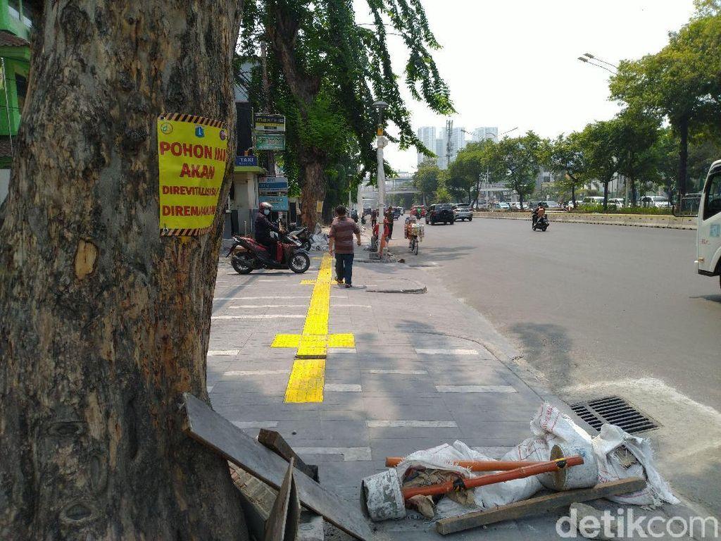 Ada 31 Pohon di Trotoar Kramat Dipasangi Poster Akan Ditebang