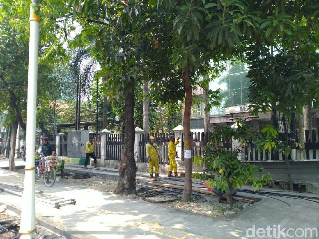 Melihat Pohon-pohon Rindang di Trotoar Kramat yang Bakal Tinggal Kenangan