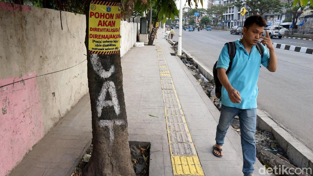 Tak Cuma Trotoar, Pohon di Ibu Kota Juga Akan Direvitalisasi