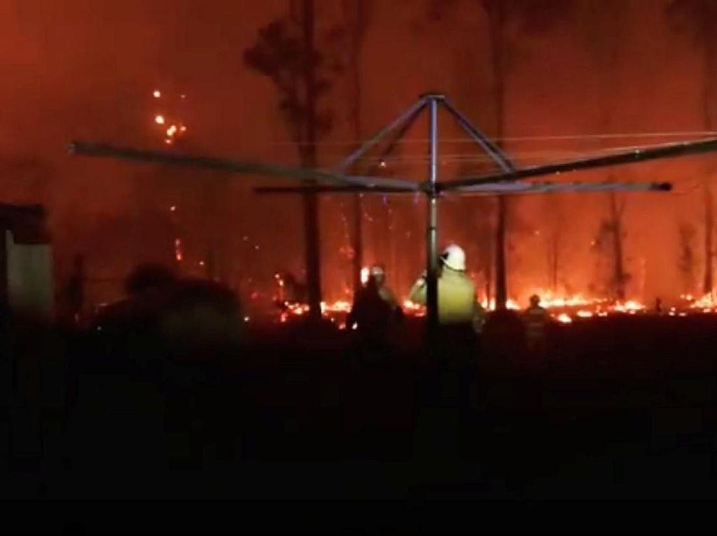 Kebakaran Hutan Australia Makin Parah, 3 Orang Tewas-150 Rumah Hancur