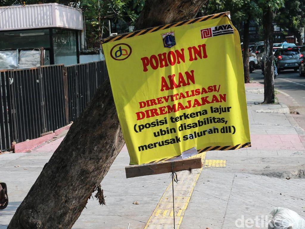 Duh, Pohon di Gunawarman Juga Bakal Ditebang