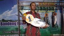 Bandeng 7,66 Kg Juarai Festival Perayaan Maulid Nabi di Sidoarjo