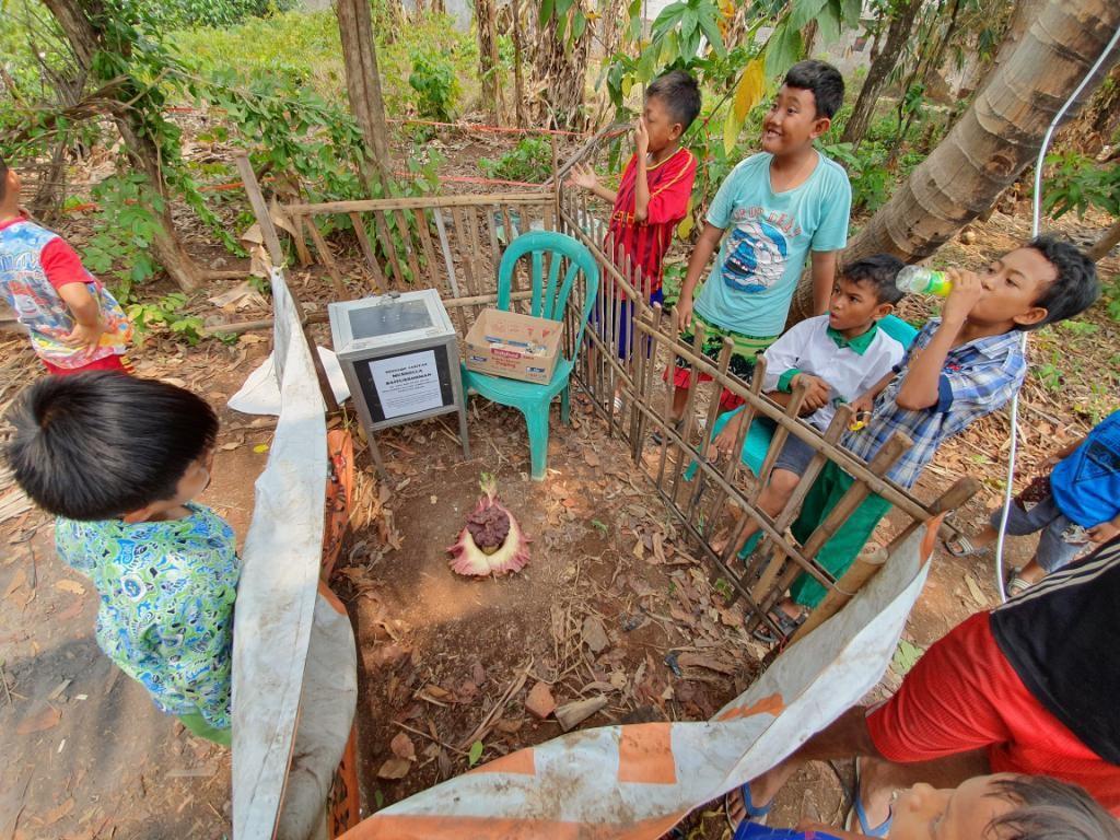 Tanaman Mirip Bunga Bangkai di Bekasi Jadi Tontonan, Warga Siapkan Kotak Amal