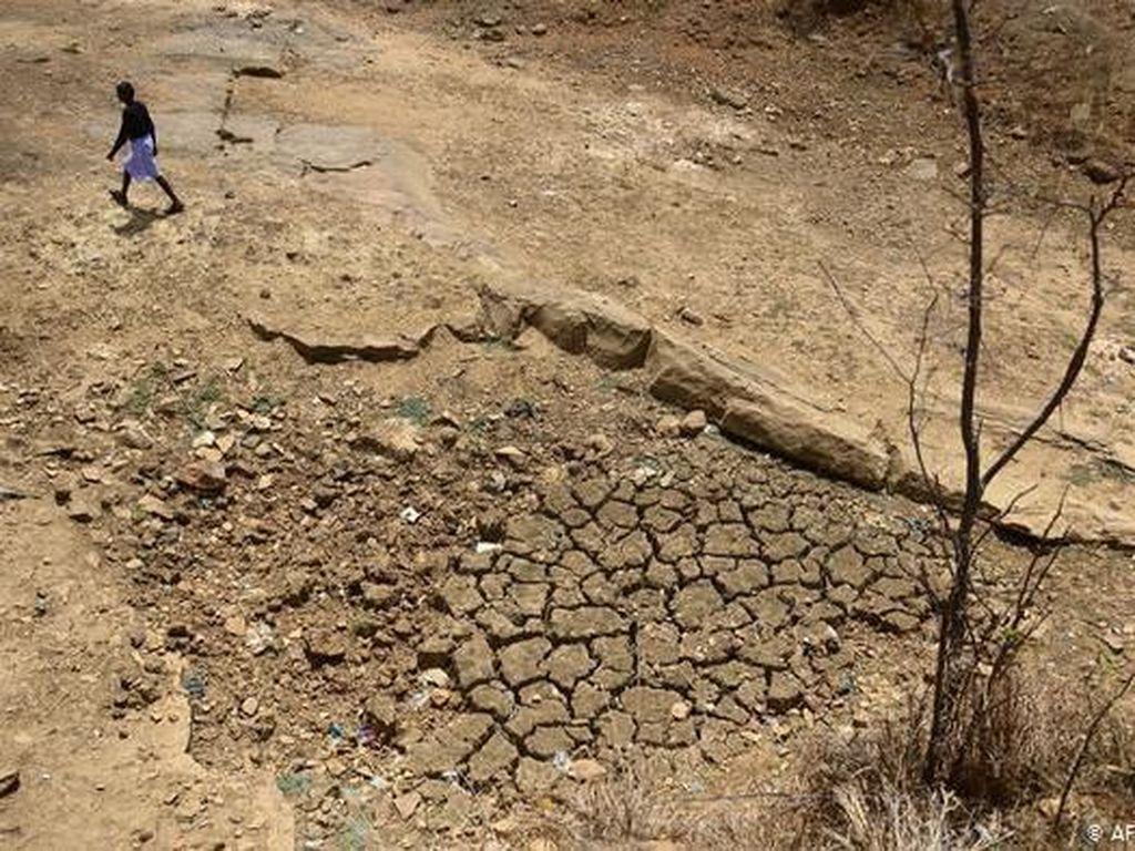 Perjuangan Anak-anak Petani di India Setelah Ditinggal Bunuh Diri