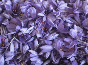 6 Manfaat Saffron, Rempah Termahal di Dunia untuk Kesehatan