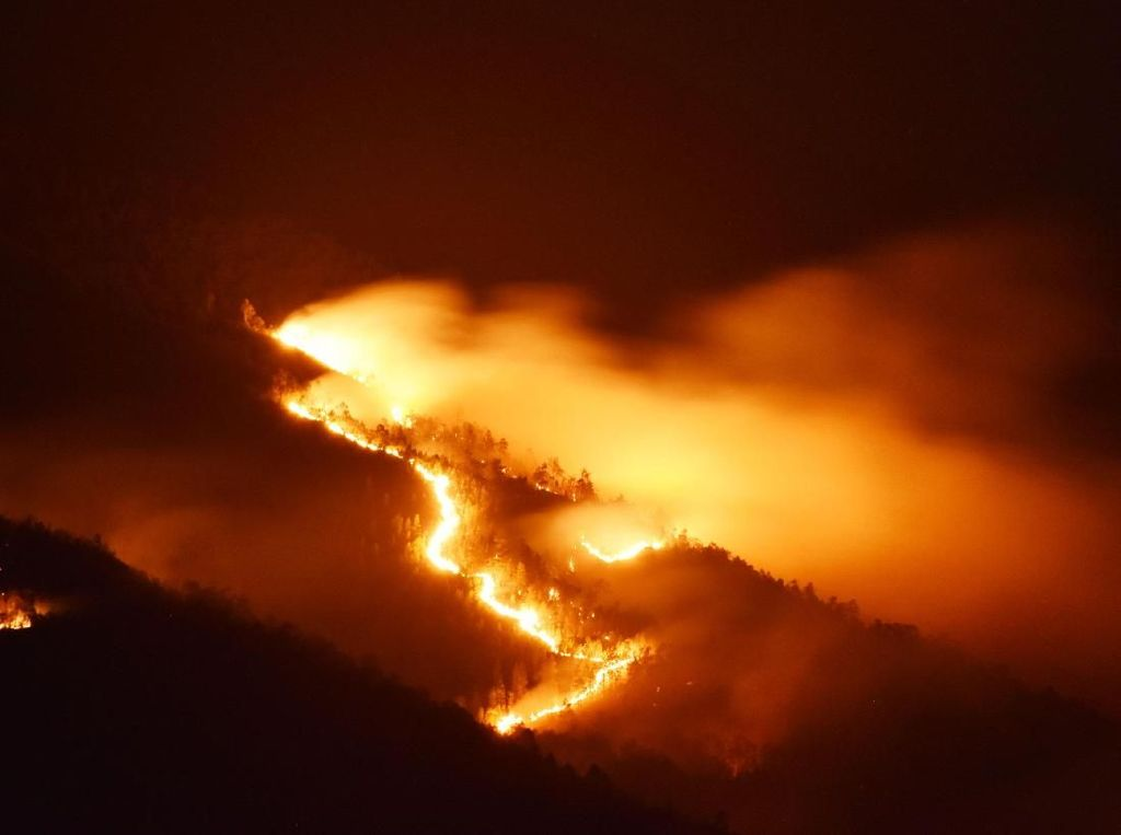 Terbakar, Gunung Lawu Merah Membara