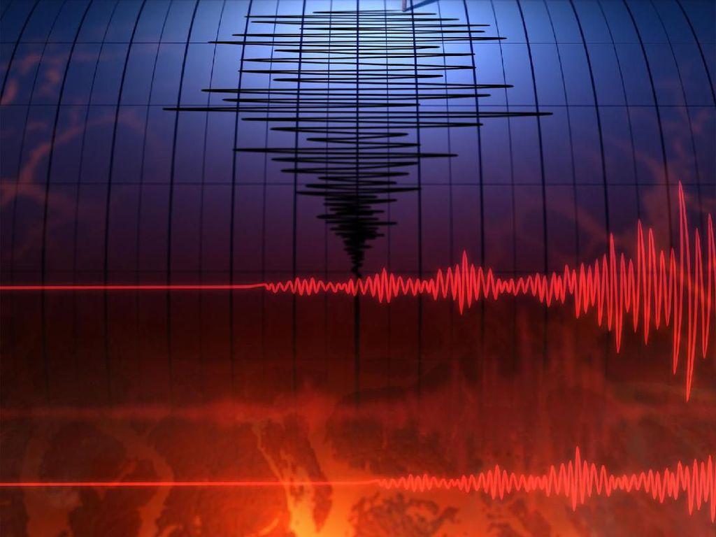 Gempa M 4,9 Terjadi di Sumbawa